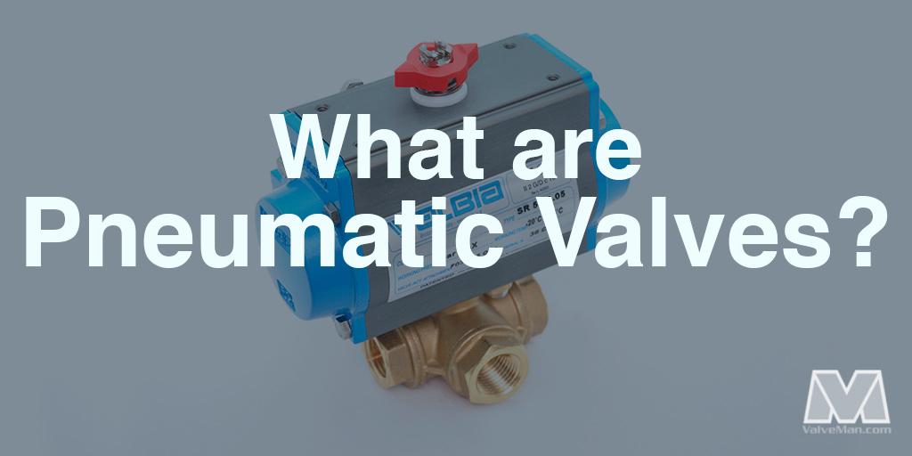 pneumatic-valves-bonomi-8p0129.jpg